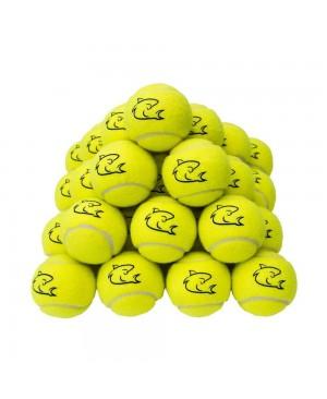 Shark Tennis Balls Lot de 30 balles de tennis jaunes de haute qualité pour tennis, cricket, enfants, chiens